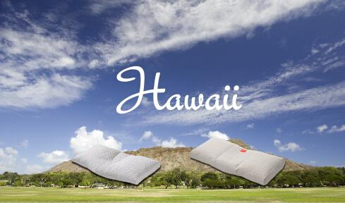 ハワイとドクターエルピロー