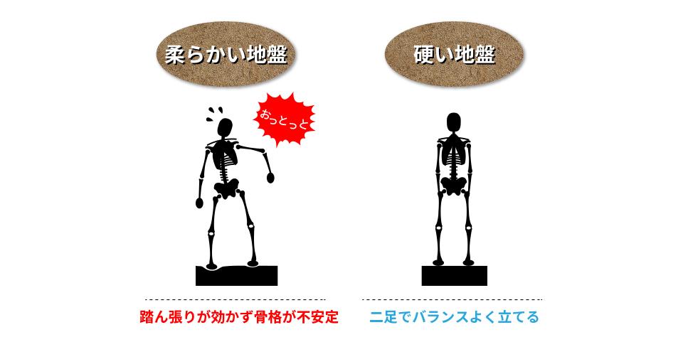 柔らかい地盤・・・踏ん張りが効かず骨格が不安定 硬い地盤・・・二足でバランスよく立てる
