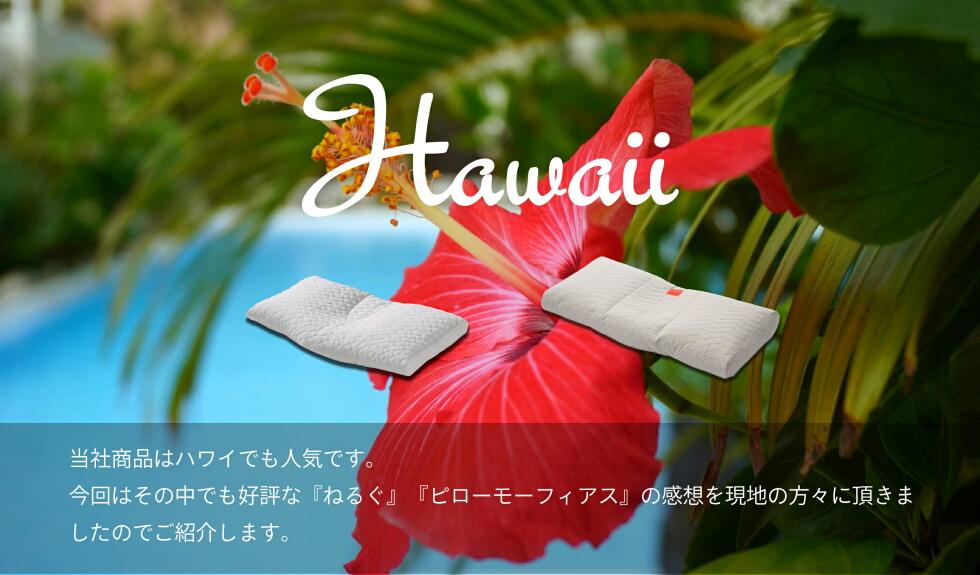 aloha02